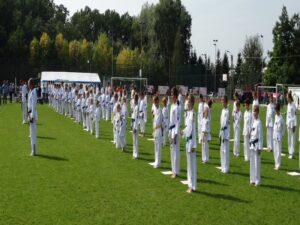 Wielki pokaz taekwondo
