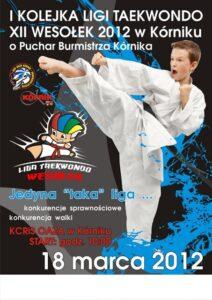 18 marca 2012 Liga Taekwondo XII Wesołek 2012